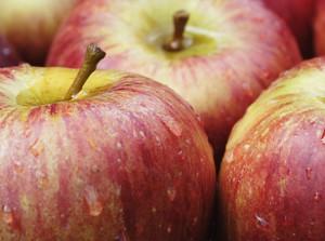 Новый сорт яблок Jazz